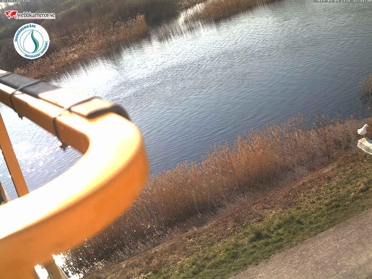 Webbkamera 2 - Naturum Vattenriket