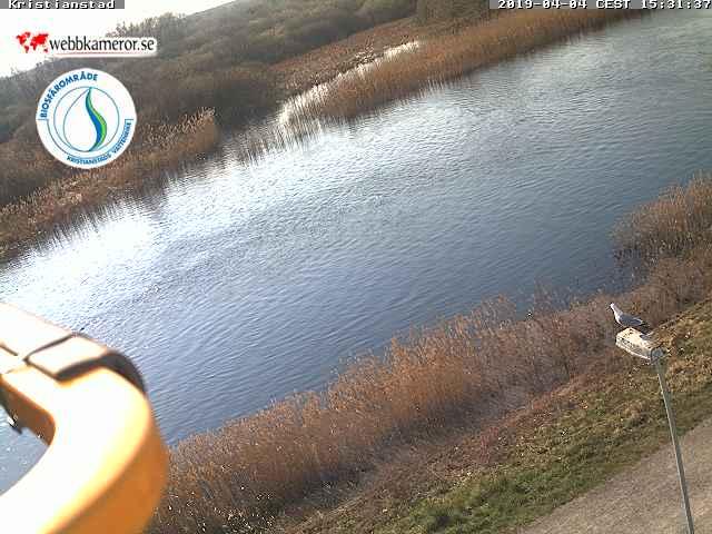 Webbkamera 1 - Naturum Vattenriket